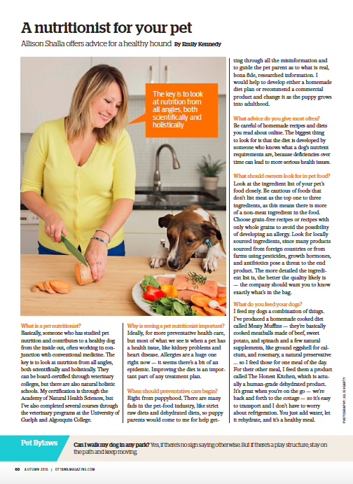 Nutritionist-for-your-pet
